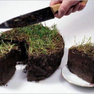 Задачи землеустроительной экспертизы и вопросы, решаемые экспертами