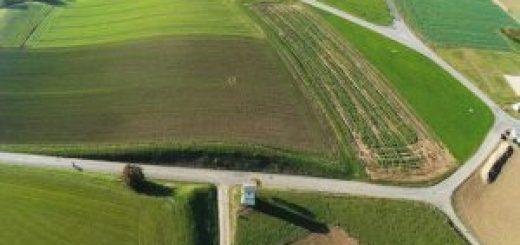 Можно ли разделить землю без дома через суд?