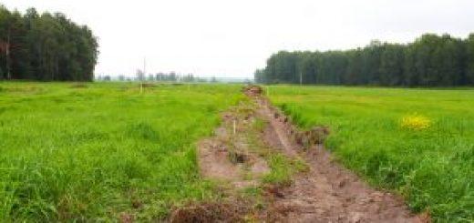 Как поделить землю между собственниками через суд качественно?