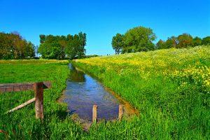 Необходимость проведения землеустроительной экспертизы