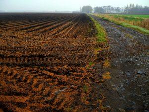 Спорные вопросы землеустроительной экспертизы