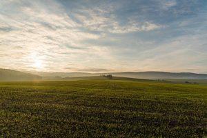 Возможности землеустроительной экспертизы